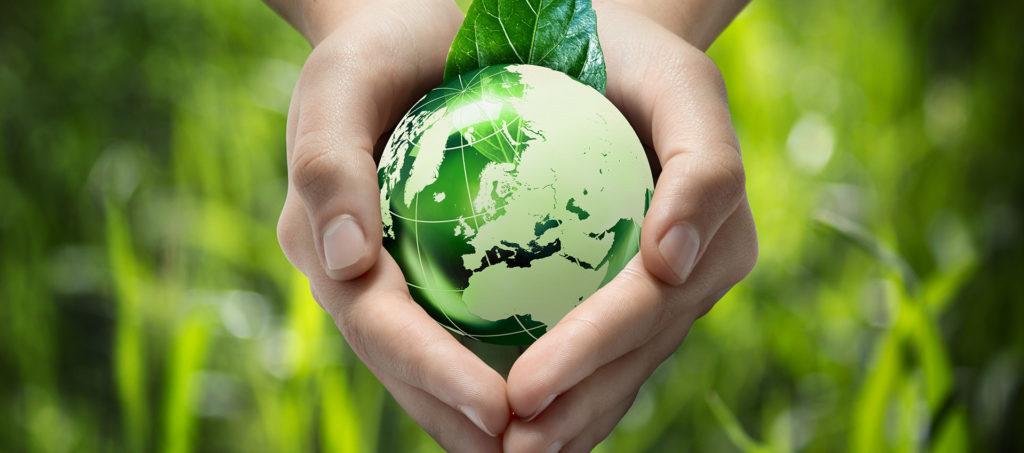 ecologie vegetale