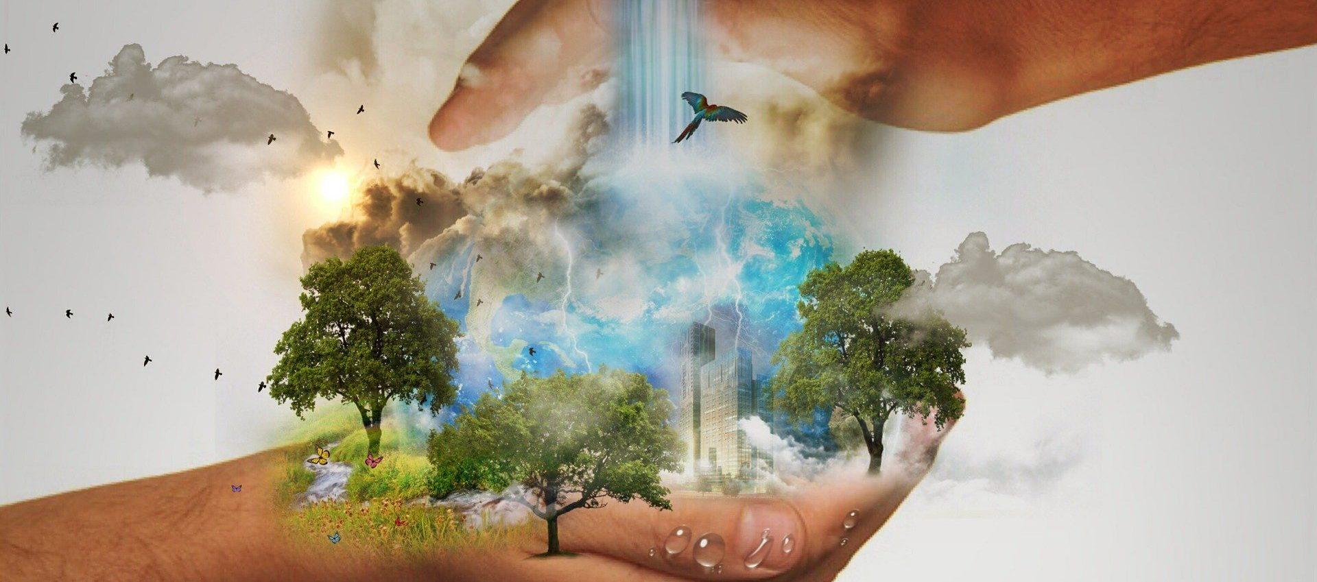 ecologie industrielle