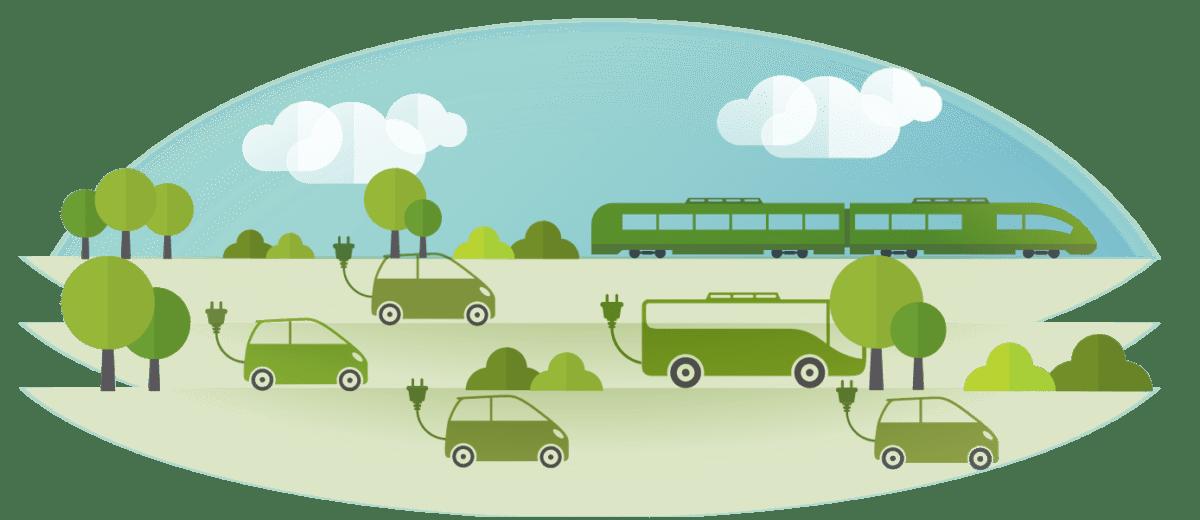 transport vert